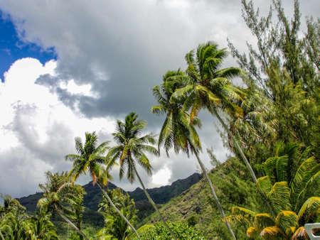French Polinesia