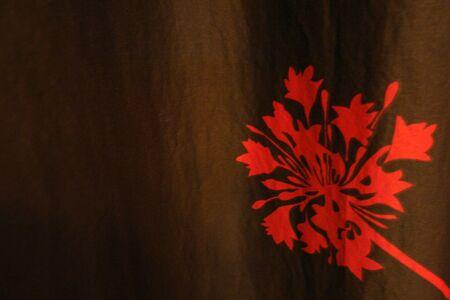 赤色の花のカーテンに 写真素材