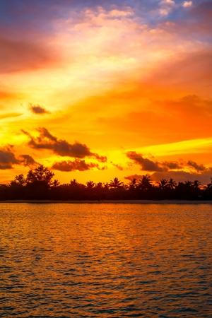 Tropical sunset Stock Photo - 19928007