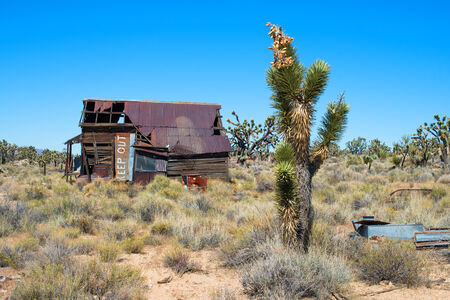 keep out: Joshua tree and abandoned house with Keep Out sign Stock Photo