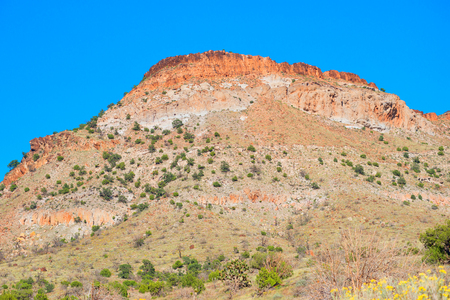 Red mountain in Mojave Mational Preserve photo