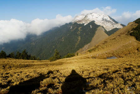A landscape with snow mountain peak and yellow grassland. photo
