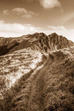 It is a way toward the beautiful mountain. photo