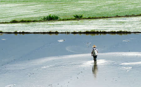 It is a farmer spray insecticide with traditional way on the farm. Stock Photo - 5421436