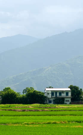 Here the green farm with house and mountain far away. photo