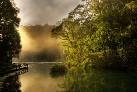 Landscape of morning sunrise with lake and forest.