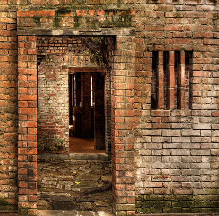 Discarded ruin with old door and wall. Stock Photo - 6519595
