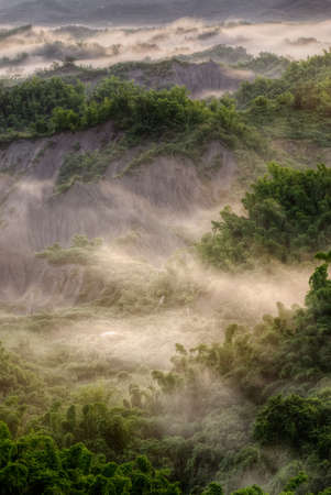 Green forest with mist, beautiful landscape of nature in Taiwan, Asia. Stock Photo - 7672944