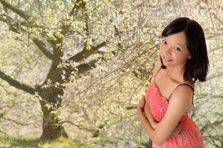 Attractive Asian woman in outdoor of plum blossom garden. photo