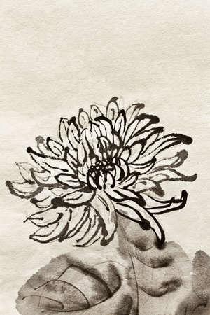 japanese chrysanthemum: Artwork of Chinese traditional painting of single flower, chrysanthemum on art paper. Stock Photo