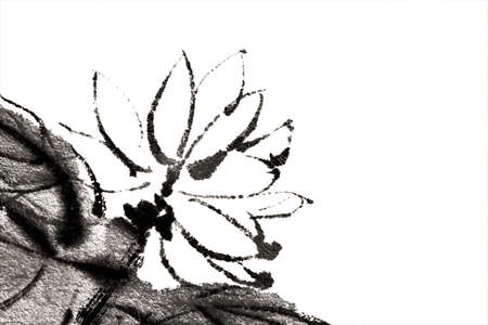 Flower of painting in Chinese traditional style on white background. photo