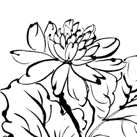 chinese painting: Traditional Chinese painting of flower on white background. Stock Photo