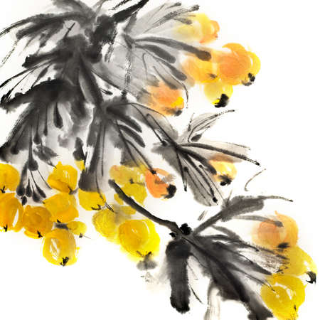 japanese painting: Colorful Chinese painting, traditional ink artwork of flowers on white background.