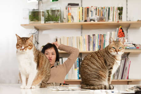 Funny image of cats and woman in home. photo