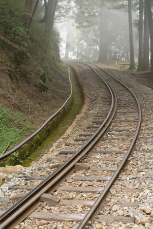 forest railroad: Railroad with nobody in forest with fog in Alishan National Scenic Area, Taiwan, Asia. Stock Photo