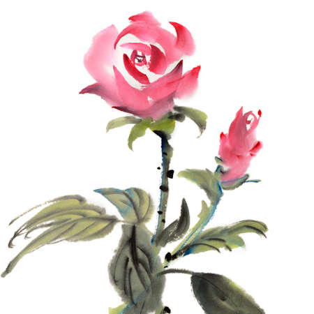 handmade graphic texture: Chinese traditional painting of rose flower on white background. Stock Photo