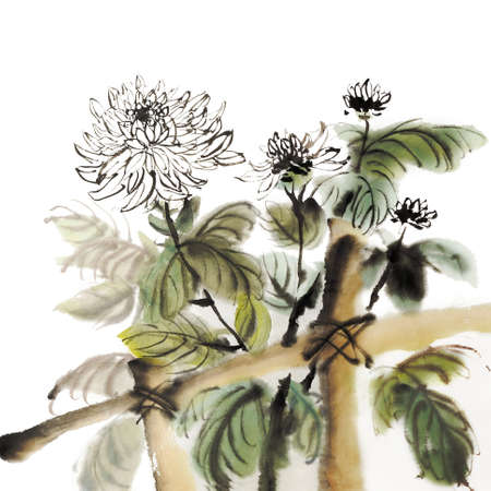 japan calligraphy: Chinese chrysanthemum garden ink painting on white background.