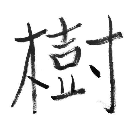 arbor: tree, traditional chinese calligraphy art isolated on white background.