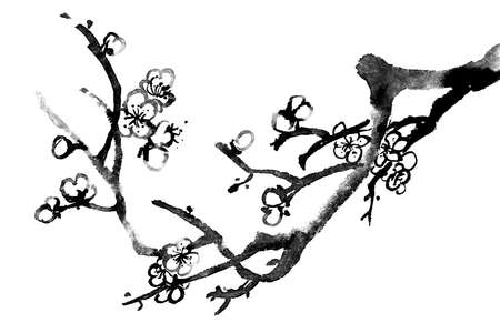 canvas element: Chinese black and white traditional ink painting, plum blossom on white background.