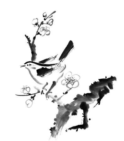 tranquility: Chinese painting , plum blossom and bird, on white background. Stock Photo