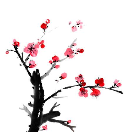 꽃의 중국어 회화, 흰색 배경에 매 화 꽃,. 스톡 콘텐츠