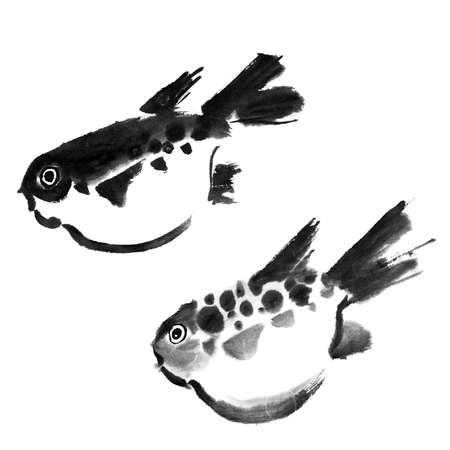 chinese pattern: Chinese painting of swellfish on white background.