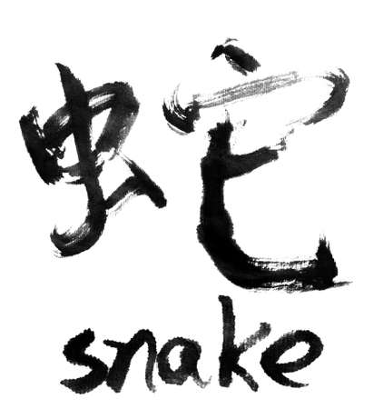 Chinese calligraphy word :  snake photo