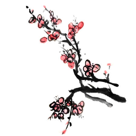 chinese calligraphy: Chinese painting of flowers, plum blossom, on white background.