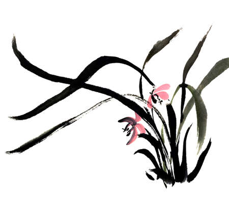 patterns japan: Chinese traditional ink painting orchid on white background. Stock Photo
