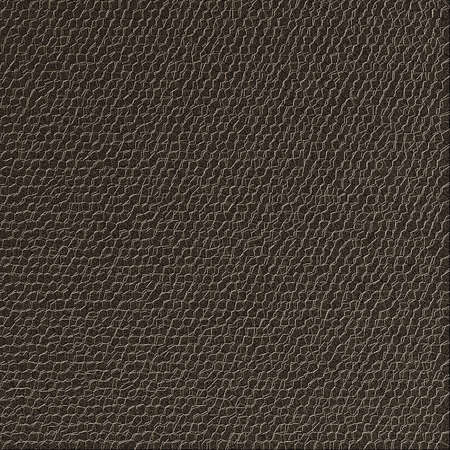 Texture background, leather  photo