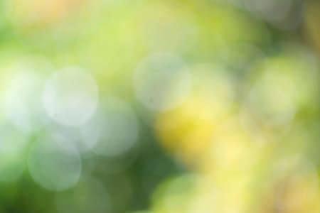 Abstract background color in selective focus.