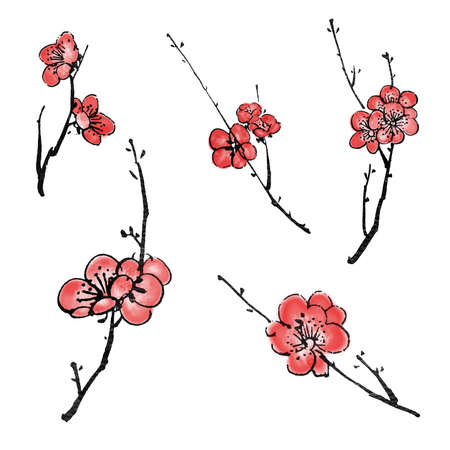 ink painting: Collection of Chinese ink painting, plum blossom branches on white background.