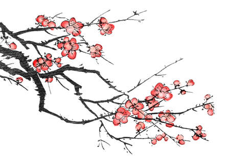 chinese script: Chinese painting of flowers, plum blossom, on white background.