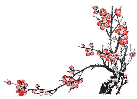 Chinese painting of flowers, plum blossom, on white background. photo