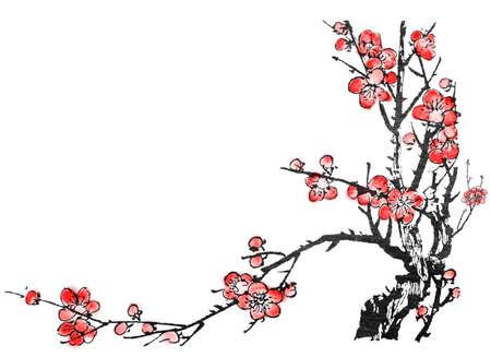 chinese brush: Chinese painting of flowers, plum blossom, on white background.