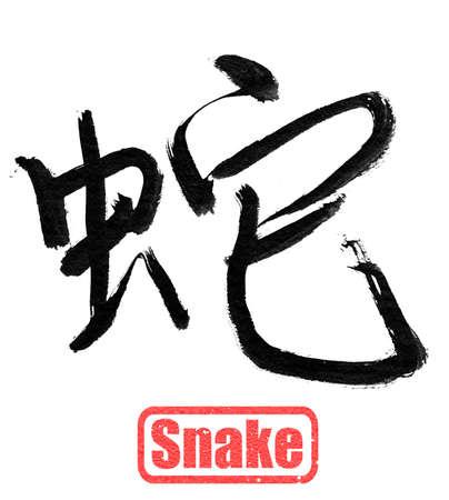 Chinese calligraphy, snake, isolated on white background.