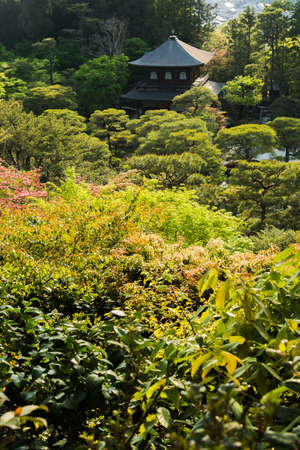 Prospects are trees in the scenery of Ginkakuji Temple, Kyoto. photo