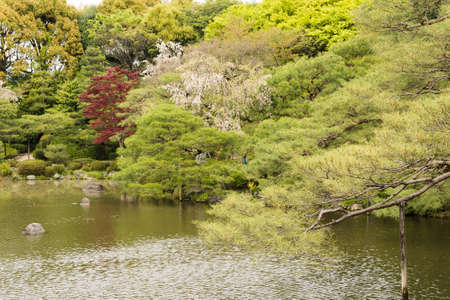pone: The scenery of Japanese garden with the pone near Heian Shrine.