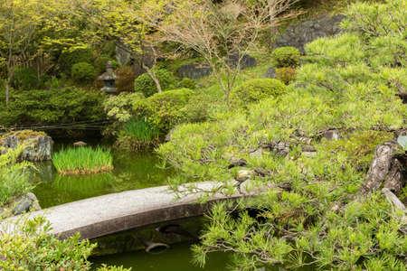Small stone bridge in Japanese garden  photo
