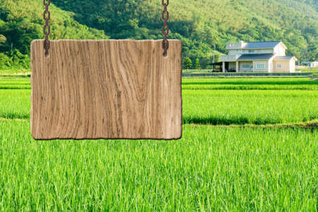Blank wooden sign on field of farm. Concept of rural, idyllic, tranquility etc. photo