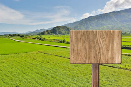 farm sign: Blank wooden sign on field of paddy rice farm. Concept of rural, idyllic, tranquility etc.