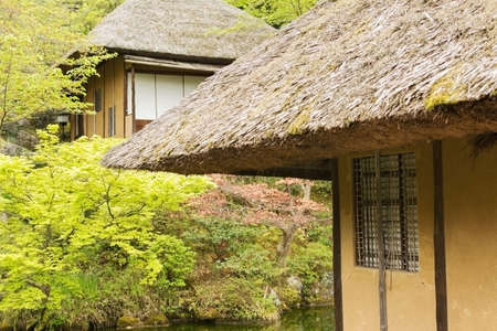 thatched house: Thatched roof of the house in Kyoto.