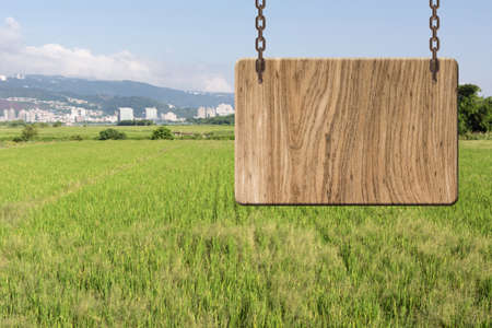 farm sign: Blank wooden sign on field of farm. Concept of rural, idyllic, tranquility etc. Stock Photo