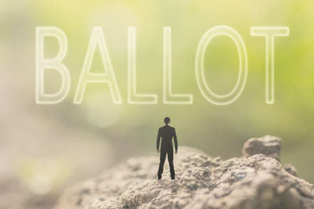 voter: Concept of democracy with a person stand in the outdoor and looking up the text over the sky in nature background.