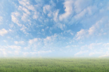 heaven: Scenic of clouds on heaven above the ground. Good background for you to put text or people on the ground.