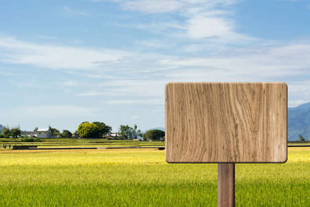 wooden board: Blank wooden sign on field of paddy farm. Concept of rural, idyllic, tranquility etc.