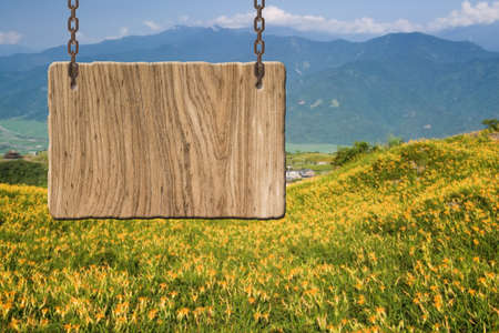 tranquility: Blank wooden sign on field of farm. Concept of rural, idyllic, tranquility etc. Stock Photo