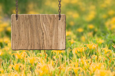 blank sign: Blank wooden sign on field of farm. Concept of rural, idyllic, tranquility etc. Stock Photo