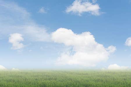 cielo: Esc�nica de nubes en el cielo por encima del suelo. Buen fondo para poner texto o la gente en el suelo.