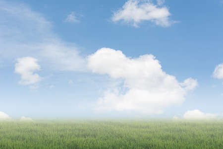 heaven background: Scenic of clouds on heaven above the ground. Good background for you to put text or people on the ground.